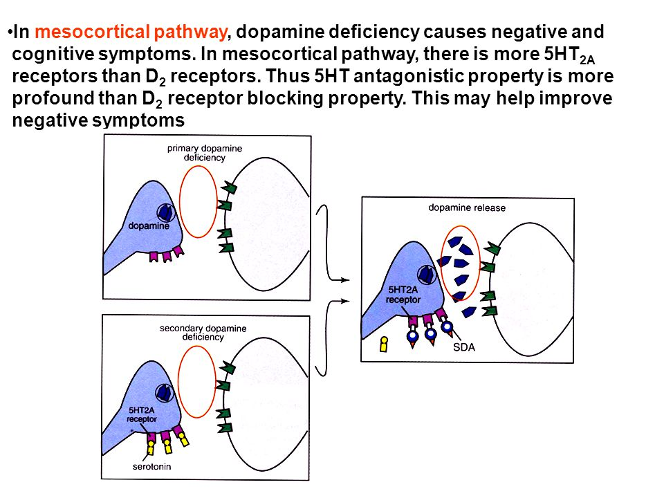 In mesocortical pathway, dopamine deficiency causes negative and cognitive symptoms. In mesocortical pathway, there is more 5HT 2A receptors than D 2