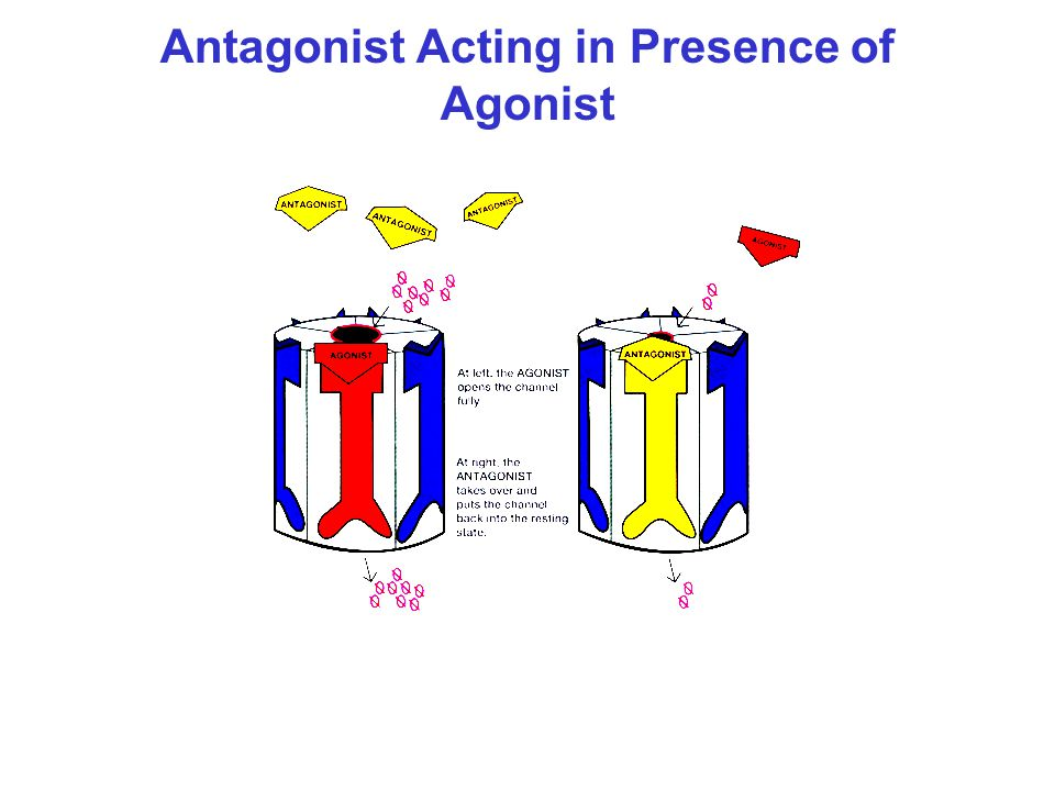 Antagonist Acting in Presence of Agonist