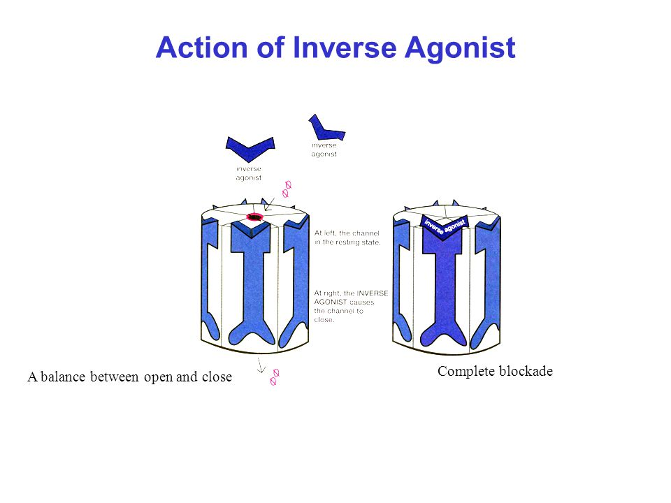 Action of Inverse Agonist A balance between open and close Complete blockade