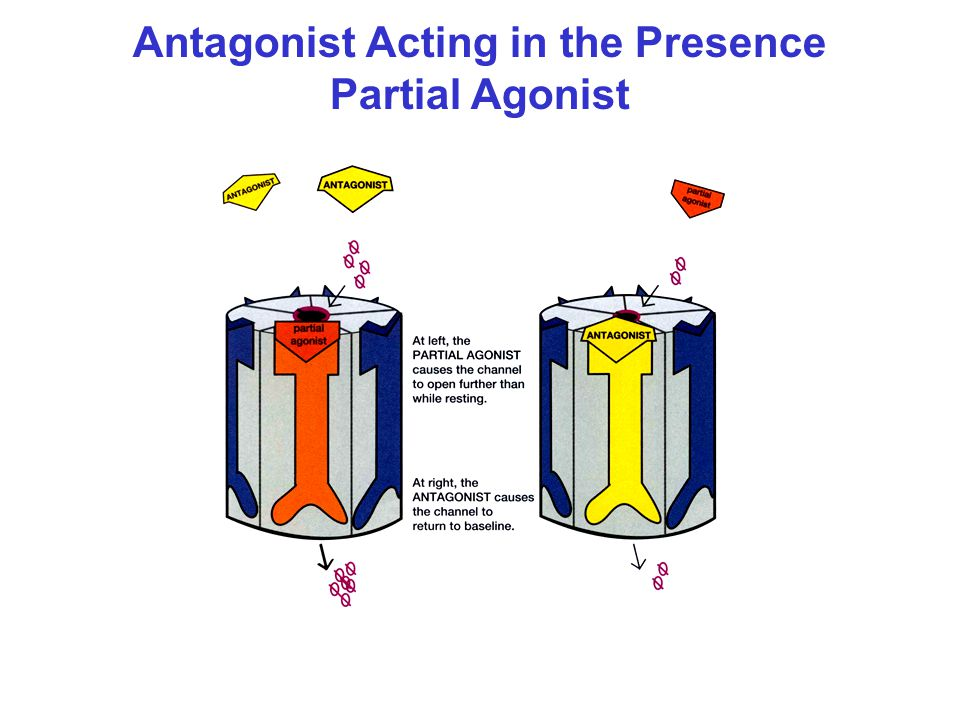 Antagonist Acting in the Presence Partial Agonist