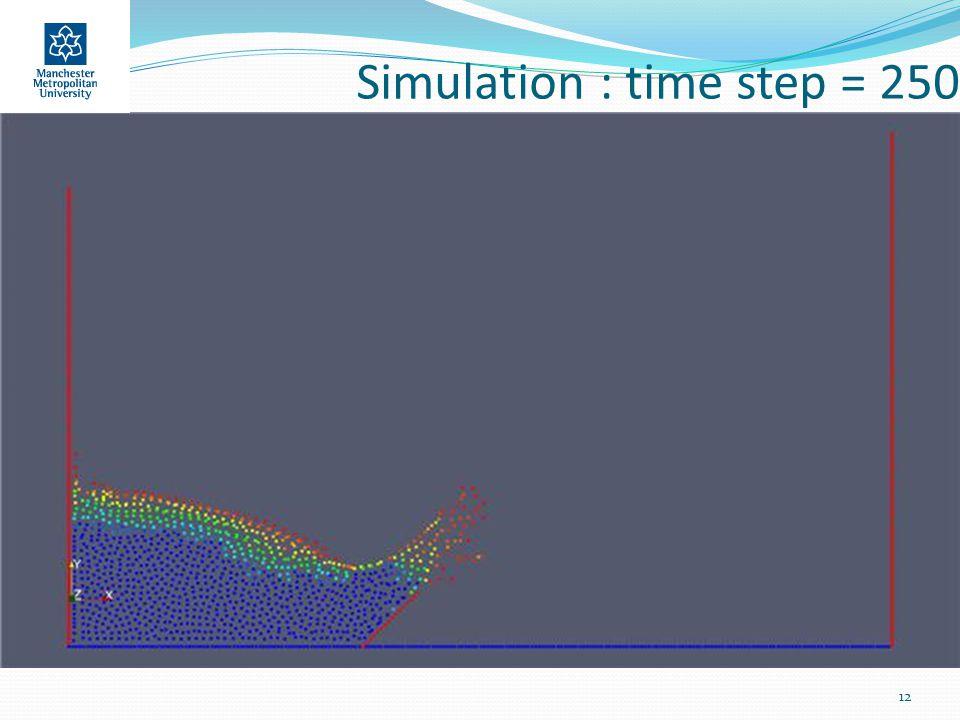 Simulation : time step = 250 12