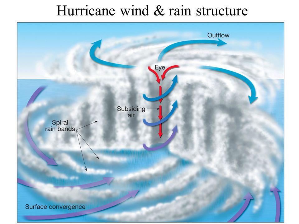 Hurricane wind & rain structure