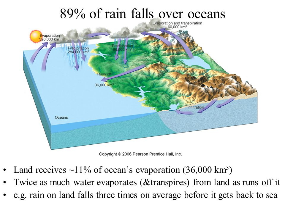 89% of rain falls over oceans Land receives ~11% of ocean's evaporation (36,000 km 3 ) Twice as much water evaporates (&transpires) from land as runs off it e.g.