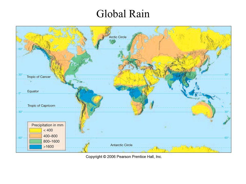 Global Rain
