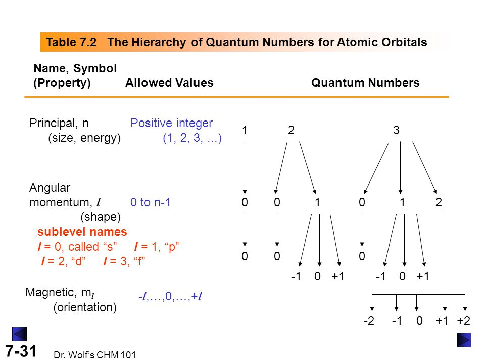 7-31 Dr. Wolf's CHM 101 Table 7.2 The Hierarchy of Quantum Numbers for Atomic Orbitals Name, Symbol (Property) Allowed ValuesQuantum Numbers Principal