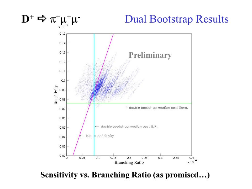 D +   +  +  - Dual Bootstrap Results Preliminary Sensitivity vs. Branching Ratio (as promised…)