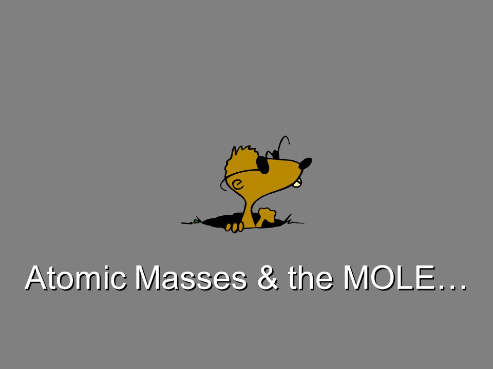 The word mole was introduced by Wilhelm Oswald, who derived the term from the word moles meaning a heap or pile. The word mole was introduced by Wilhelm Oswald, who derived the term from the word moles meaning a heap or pile. –We are just defining the pile as con- taining 6.02x10 23 items –Because it is such a huge number of items we usually reserve the mole for atoms or molecules Counting Atoms 1 mole is always = 6.02 x 10 23 items