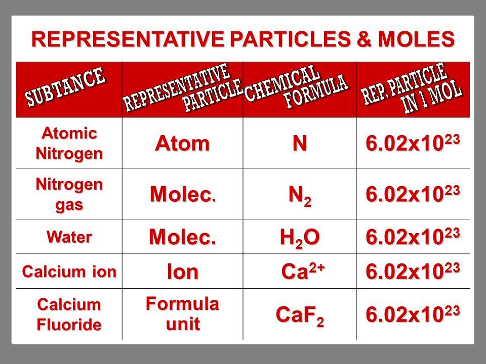 REPRESENTATIVE PARTICLES & MOLES Atomic Nitrogen AtomN 6.02x10 23 Nitrogen gas Molec. N2N2N2N2 6.02x10 23 WaterMolec. H2OH2OH2OH2O Calcium ion Ion Ca