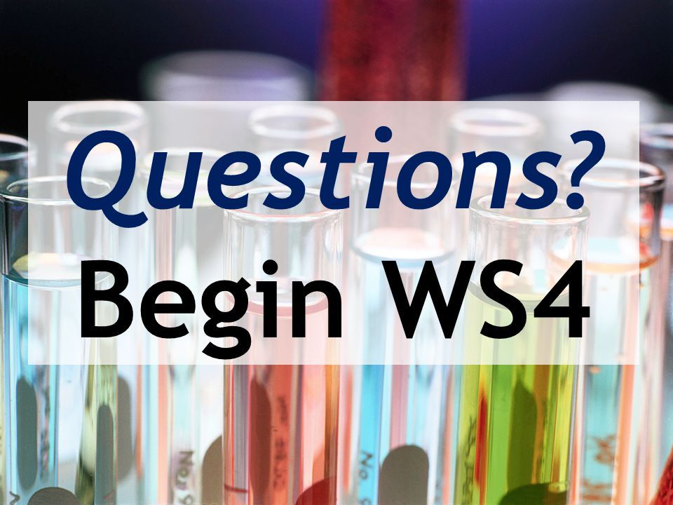 Questions? Begin WS4