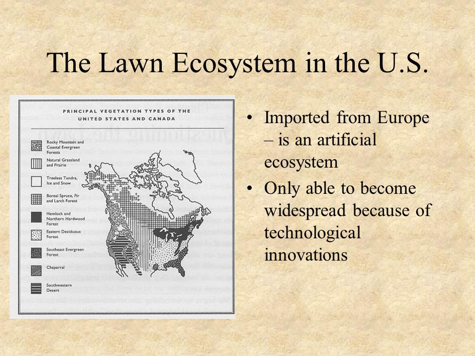 The Lawn Ecosystem in the U.S.