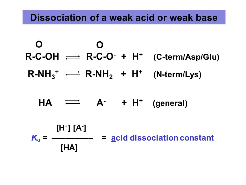 Dissociation of a weak acid or weak base [H + ] [A - ] K a = ––––––––– = acid dissociation constant [HA] R-C-OH R-C-O - + H + (C-term/Asp/Glu) R-NH 3 + R-NH 2 + H + (N-term/Lys) HA A - + H + (general) O O