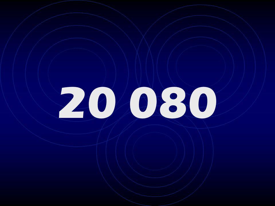 20 080