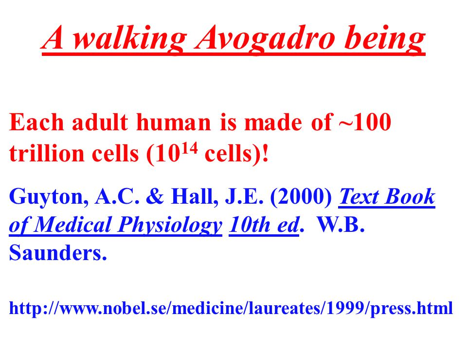 Water Molecules Per Person If each person weighs ~70 kilograms, or 70,000 grams, ~ 70% of that is water, i.e.