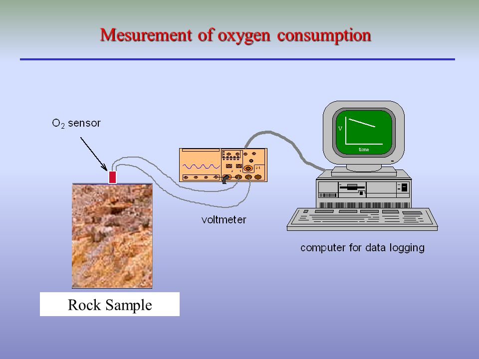 Rock Sample Mesurement of oxygen consumption