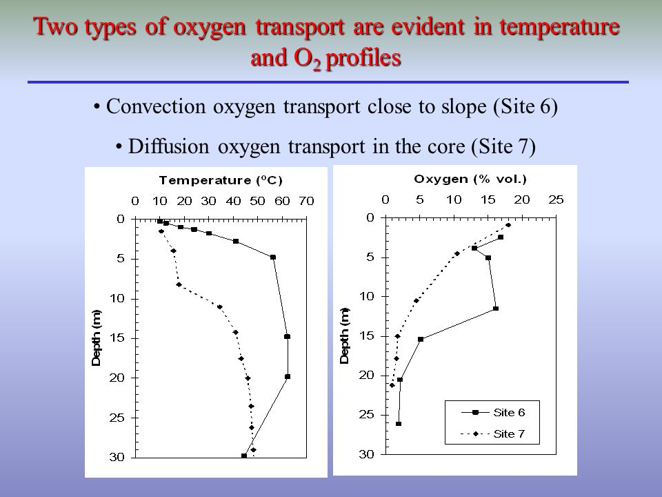 Convection oxygen transport close to slope (Site 6) Diffusion oxygen transport in the core (Site 7) Two types of oxygen transport are evident in tempe