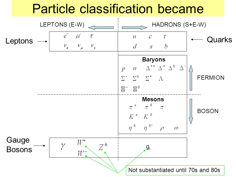 Particle classification became Gauge Bosons FERMION BOSON Quarks gigi Not substantiated until 70s and 80s Leptons Baryons Mesons HADRONS (S+E-W)LEPTONS (E-W)