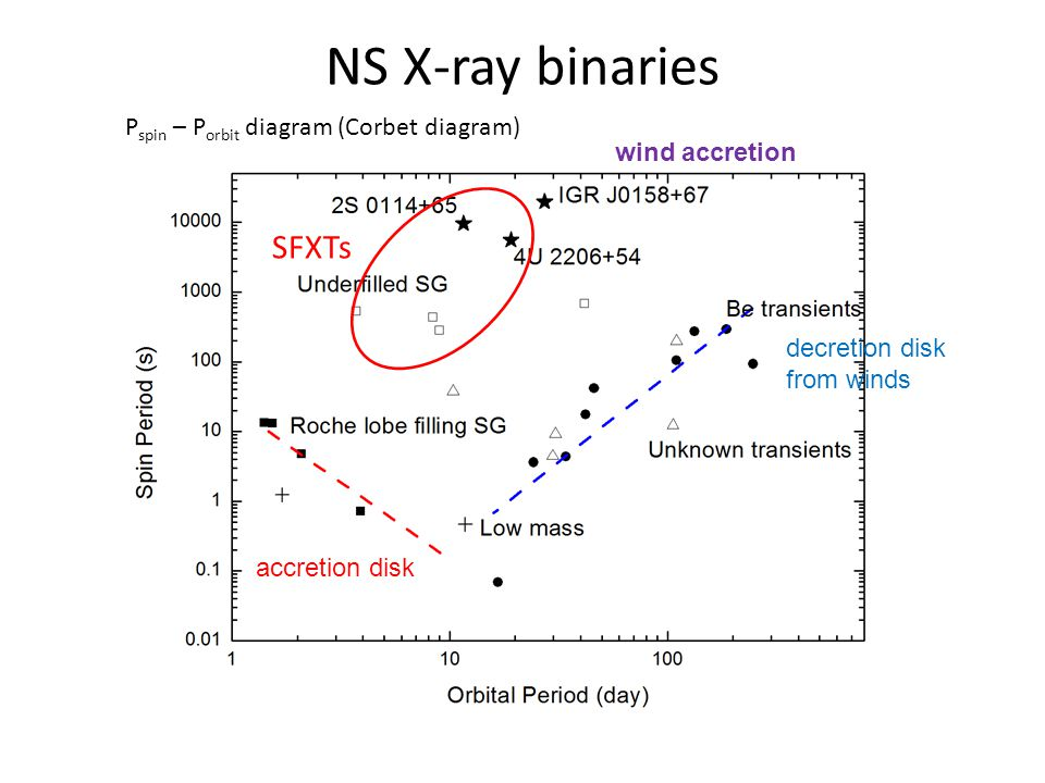 NS X-ray binaries P spin – P orbit diagram (Corbet diagram) SFXTs decretion disk from winds accretion disk wind accretion