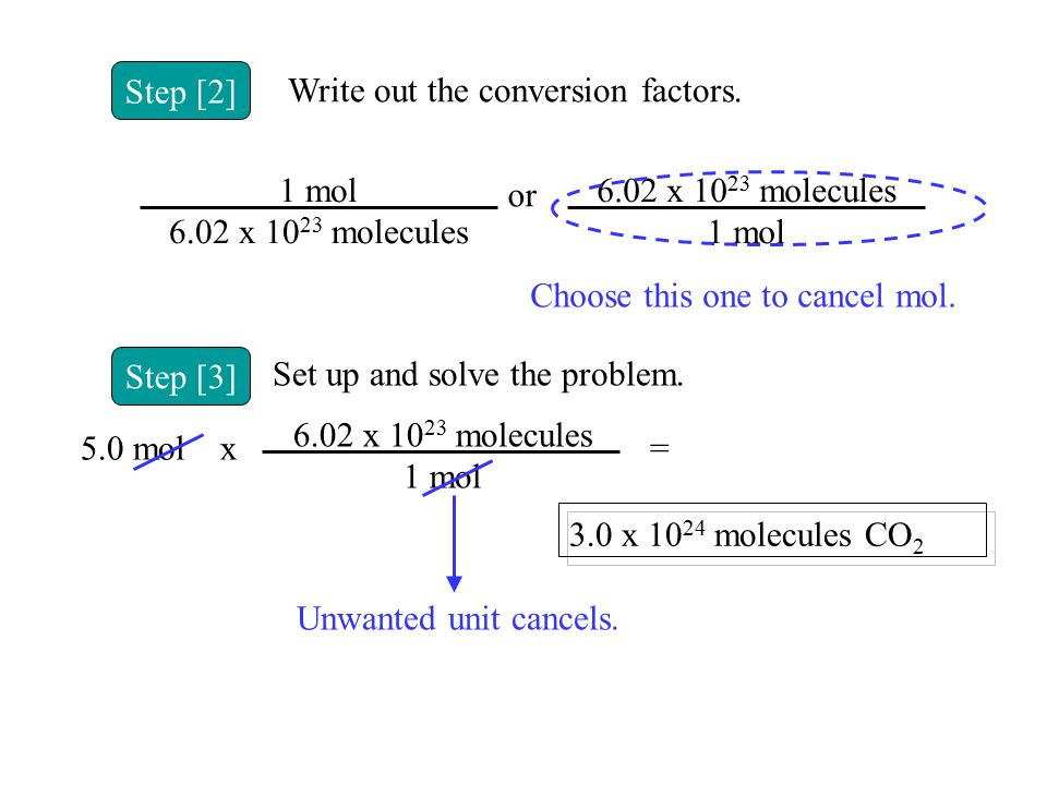 Step [3] Set up and solve the problem. 5.0 molx 6.02 x 10 23 molecules 1 mol = 3.0 x 10 24 molecules CO 2 Unwanted unit cancels. Step [2] Write out th