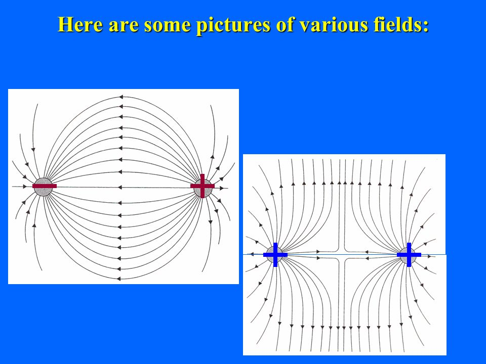 8 Here are some pictures of various fields: