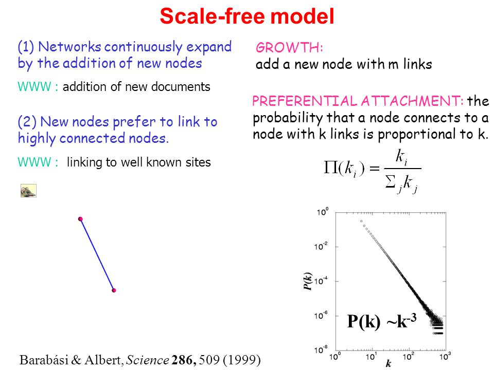 Scale-free model Barabási & Albert, Science 286, 509 (1999) P(k) ~k -3 BA model (1) Networks continuously expand by the addition of new nodes WWW : addition of new documents GROWTH: add a new node with m links PREFERENTIAL ATTACHMENT: the probability that a node connects to a node with k links is proportional to k.