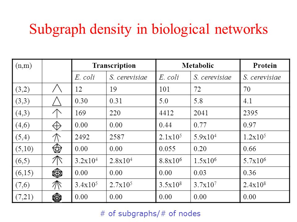 Subgraph density in biological networks (n,m)TranscriptionMetabolicProtein E.