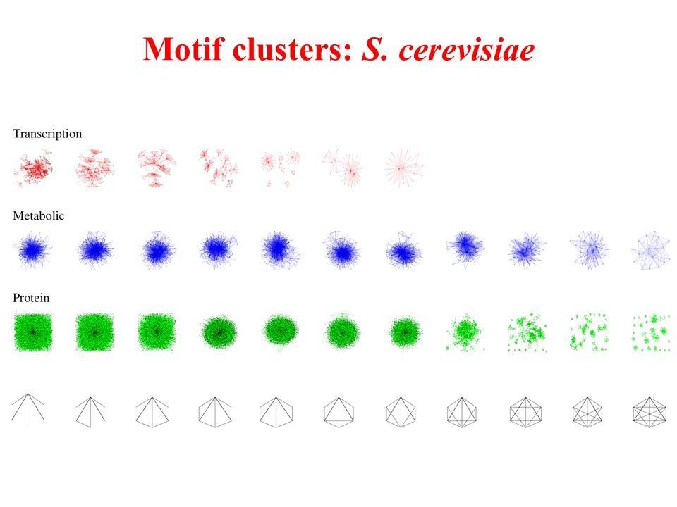 Motif clusters: S. cerevisiae