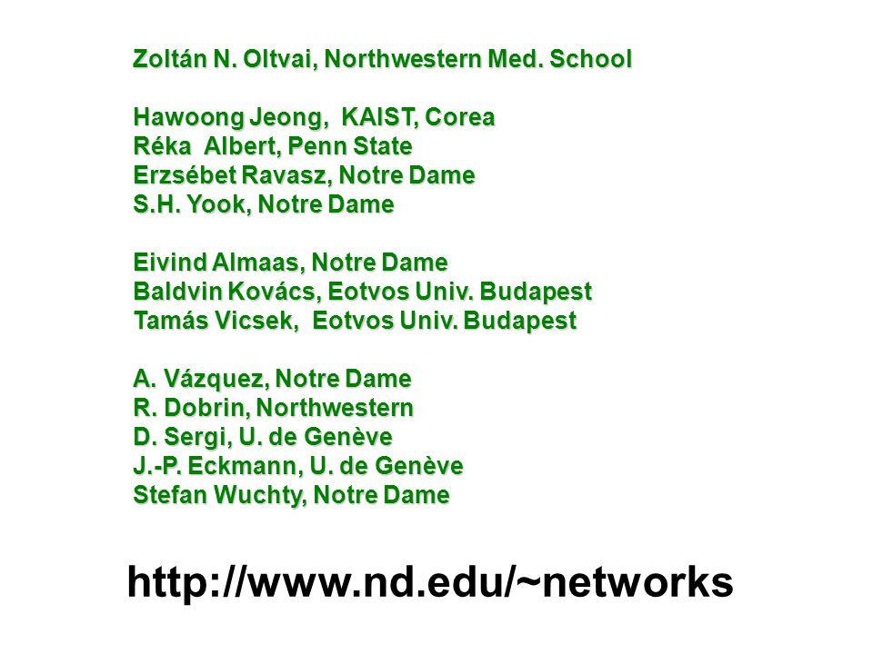 http://www.nd.edu/~networks Zoltán N. Oltvai, Northwestern Med.