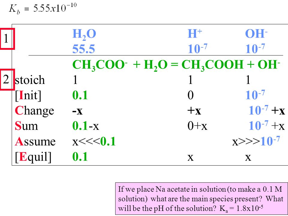 H 2 OH + OH - 55.510 -7 10 -7 CH 3 COO - + H 2 O = CH 3 COOH + OH - stoich111 [Init]0.1010 -7 Change-x+x 10 -7 +x Sum0.1-x0+x 10 -7 +x Assumex >>10 -7 [Equil]0.1xx 1 2 If we place Na acetate in solution (to make a 0.1 M solution) what are the main species present.