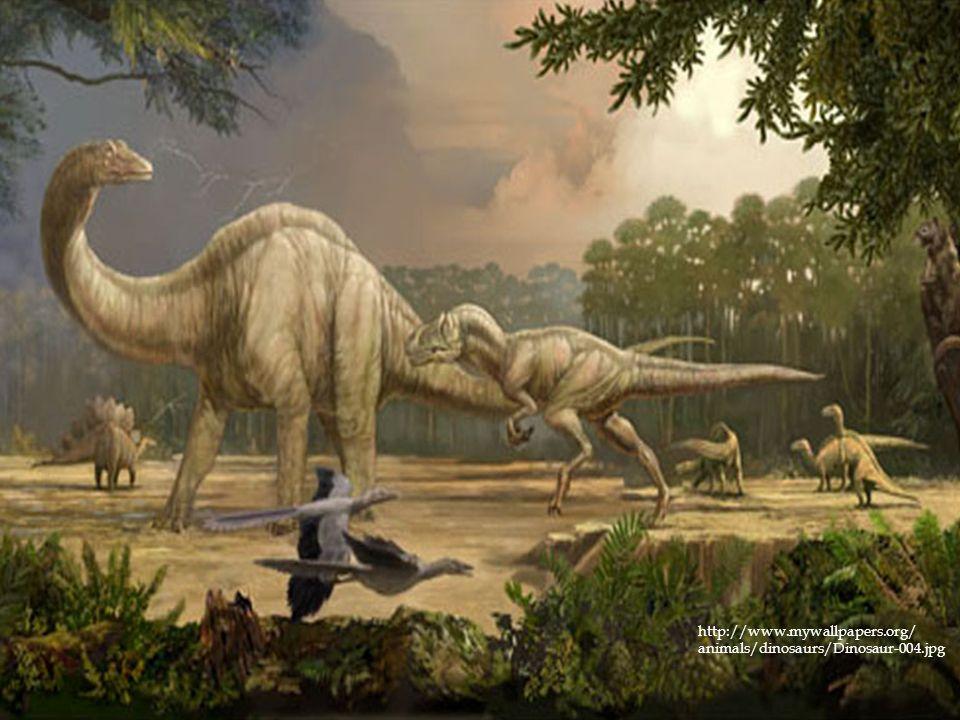 http://www.mywallpapers.org/ animals/dinosaurs/Dinosaur-004.jpg