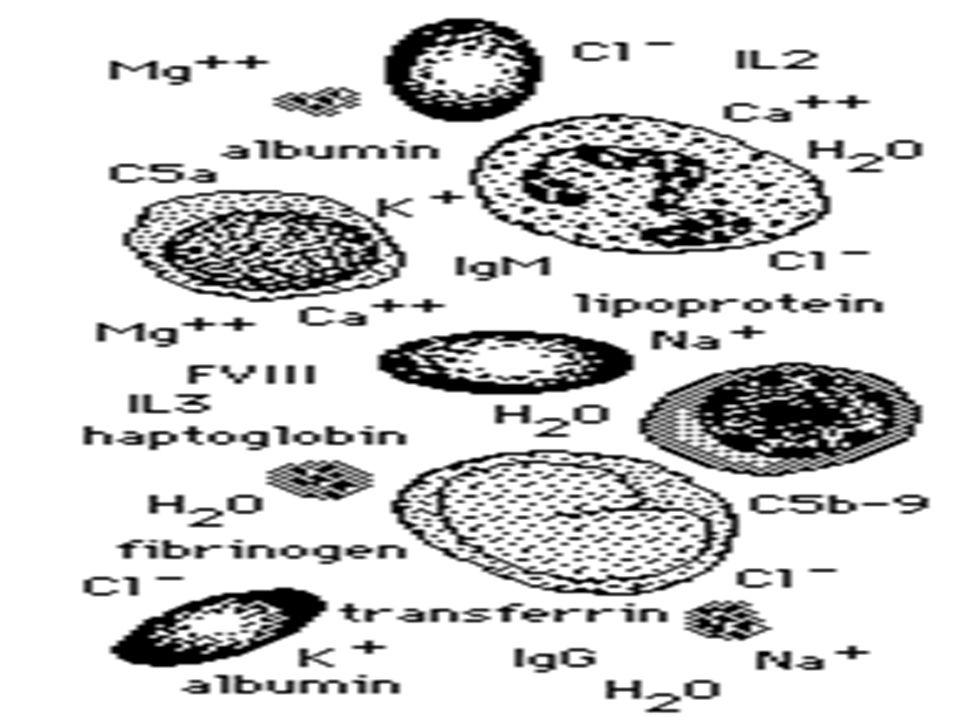 Lab Language: Hematology Testing Complete Blood Count (CBC) Erythrocyte Sedimentation Rate (ESR) Sickle Cell Screening Hemoglobin Electrophoresis Ferritin Iron Total Iron Binding Capacity (TIBC) Transferrin