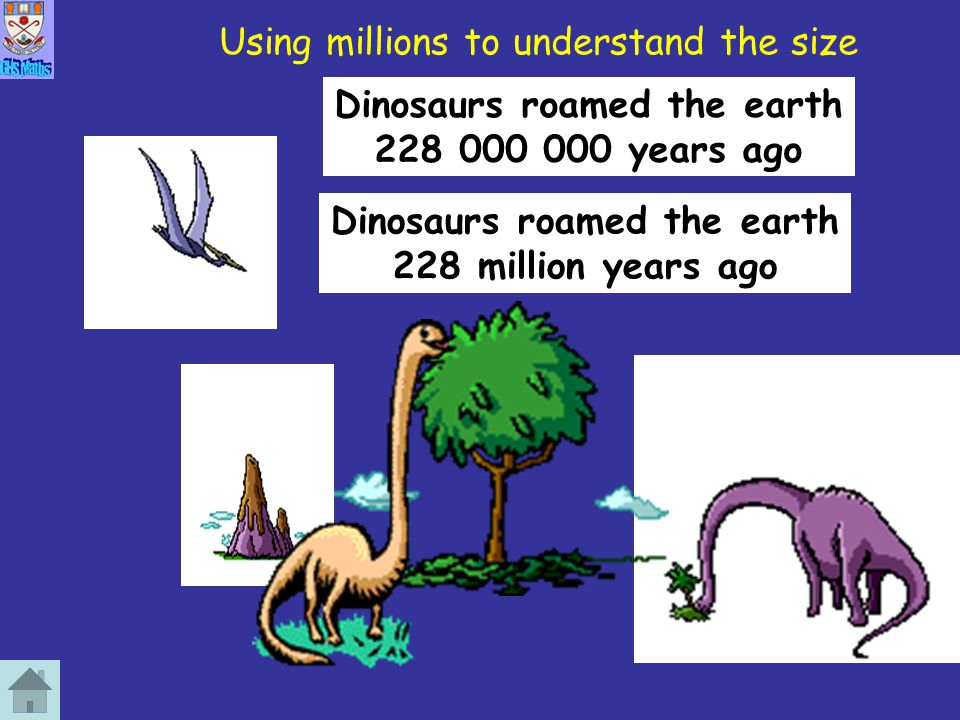 Using millions to understand the size Dinosaurs roamed the earth 228 million years ago Dinosaurs roamed the earth 228 000 000 years ago