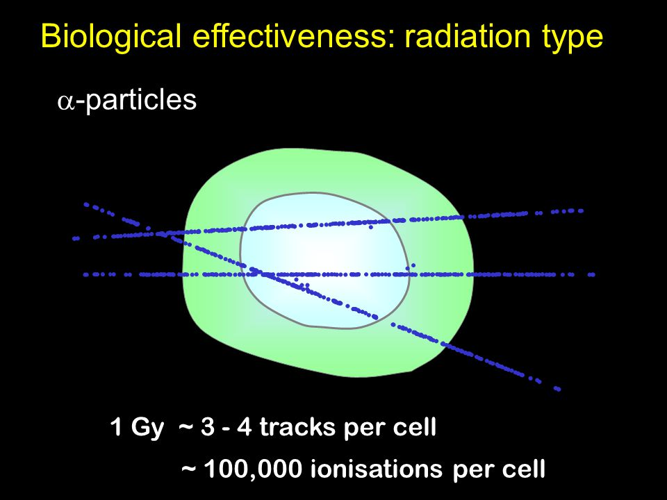  -particles 1 Gy ~ 3 - 4 tracks per cell ~ 100,000 ionisations per cell Biological effectiveness: radiation type
