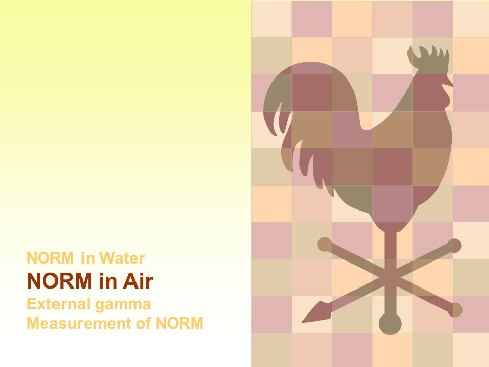 NORM in Water NORM in Air External gamma Measurement of NORM
