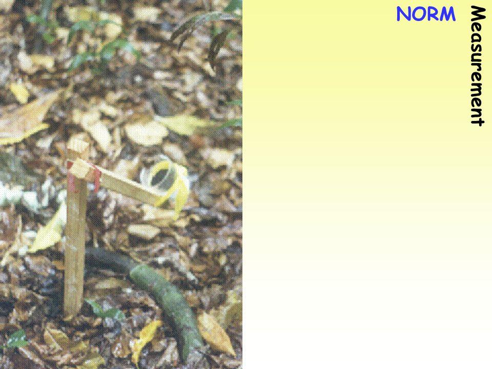NORM Measurement