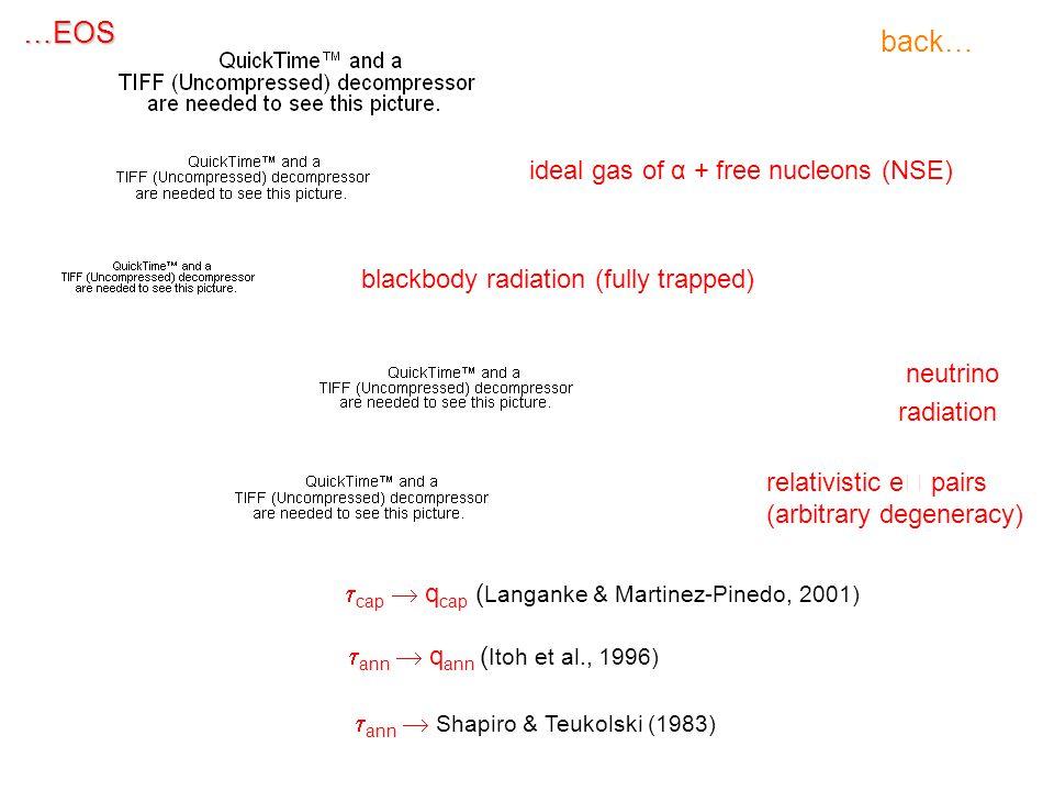 …EOS ideal gas of α + free nucleons (NSE) blackbody radiation (fully trapped) neutrino radiation relativistic e  pairs (arbitrary degeneracy)  cap  q cap ( Langanke & Martinez-Pinedo, 2001)  ann  q ann ( Itoh et al., 1996)  ann  Shapiro & Teukolski (1983)