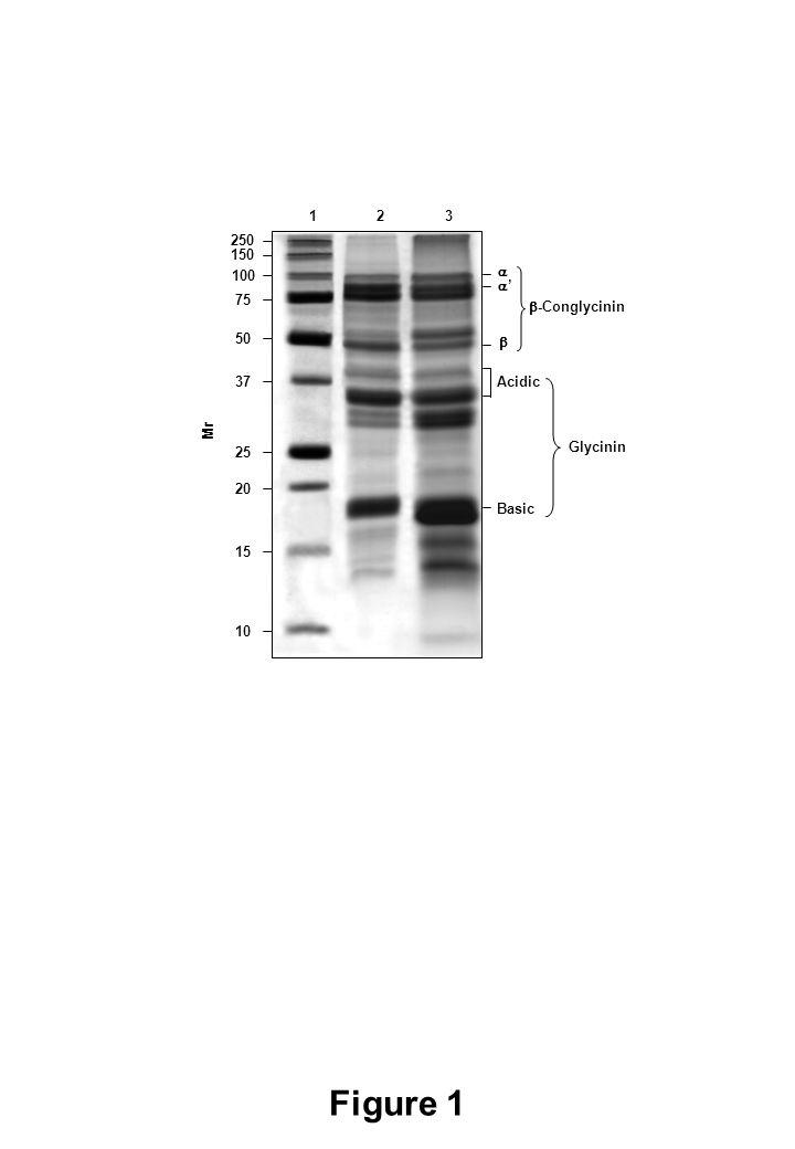 250 150 100 75 50 37 25 20 15 10 Figure 1  ''   -Conglycinin Acidic Basic Glycinin Mr 123