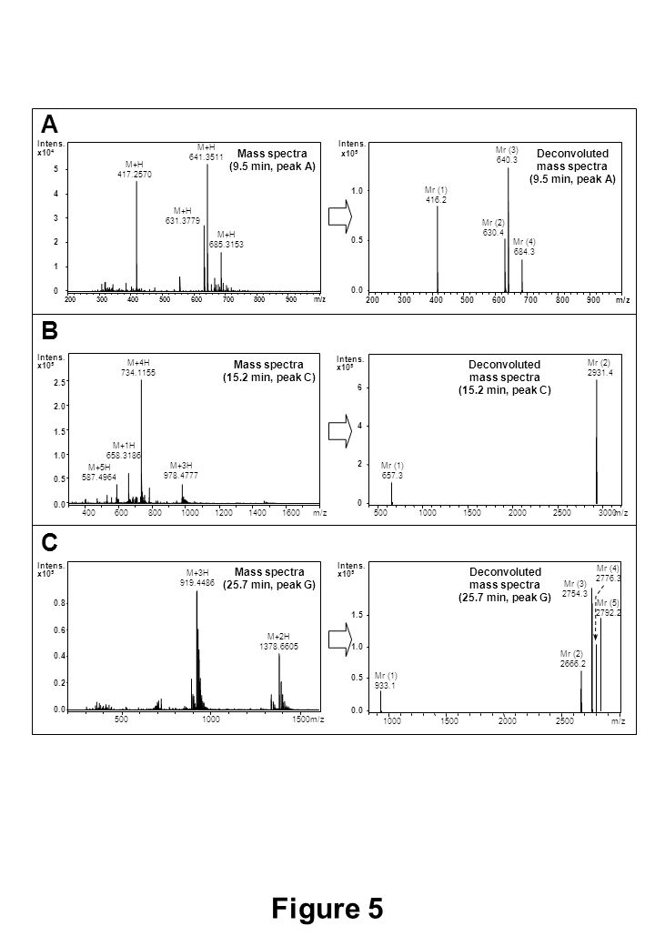 Figure 5 Mr (3) 640.3 0.0 0.5 1.0 Intens. 200300400500600700800900m/z Mr (2) 630.4 Mr (4) 684.3 M+H 417.2570 M+H 641.3511 Mass spectra (9.5 min, peak