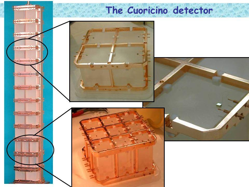The Cuoricino detector