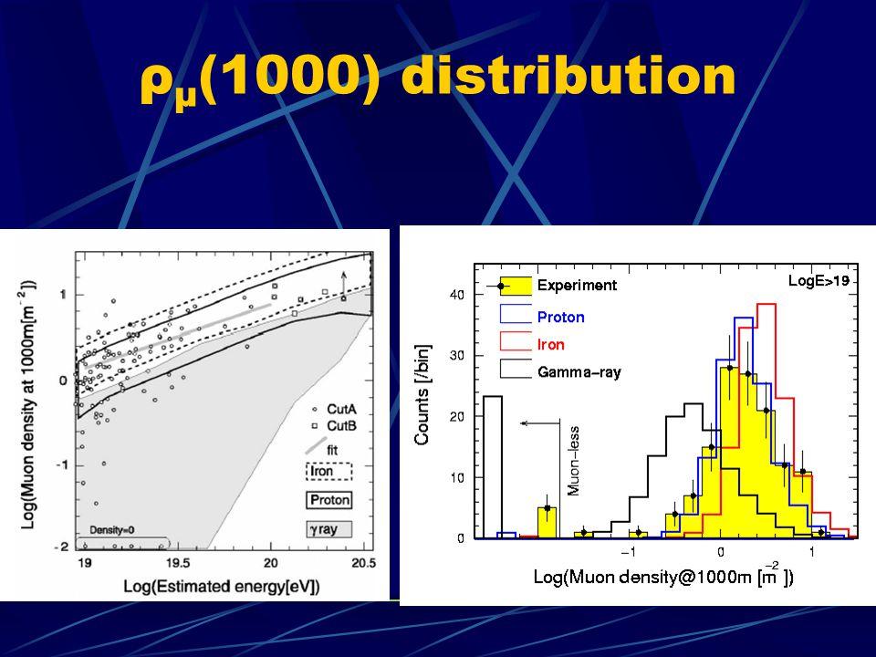 ρ μ (1000) distribution