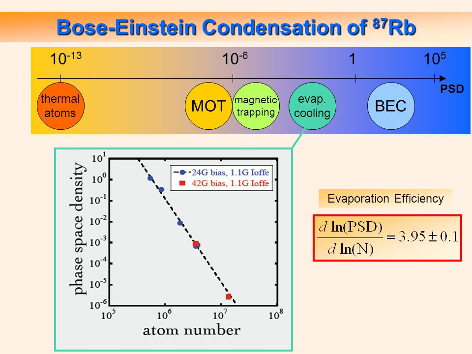 Bose-Einstein Condensation of 87 Rb Evaporation Efficiency BEC thermal atoms magnetic trapping evap.