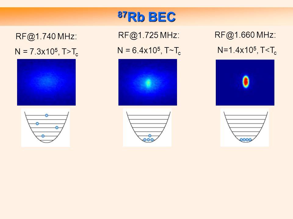 87 Rb BEC RF@1.740 MHz: N = 7.3x10 5, T>T c RF@1.725 MHz: N = 6.4x10 5, T~T c RF@1.660 MHz: N=1.4x10 5, T<T c