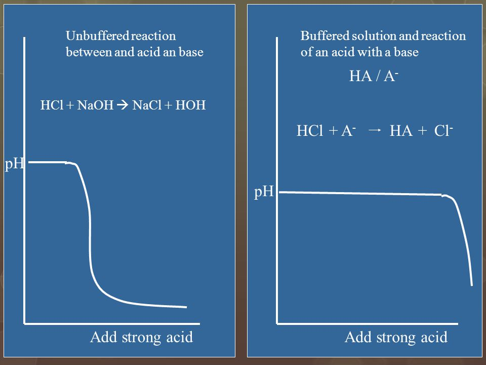 30 pH Add strong acid pH Add strong acid Unbuffered reaction between and acid an base Buffered solution and reaction of an acid with a base HA / A - HCl+A-A- HA+Cl - HCl + NaOH  NaCl + HOH