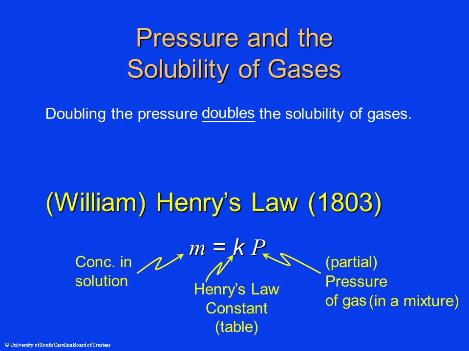 © University of South Carolina Board of Trustees Pressure and the Solubility of Gases Doubling the pressure ______ the solubility of gases.