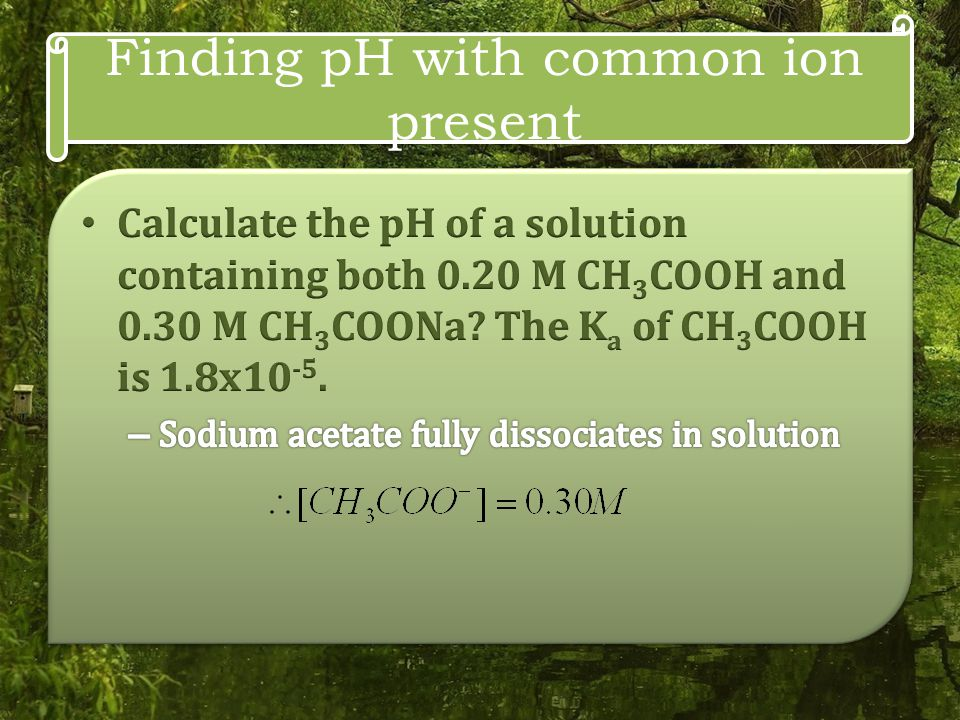 Finding pH with common ion present