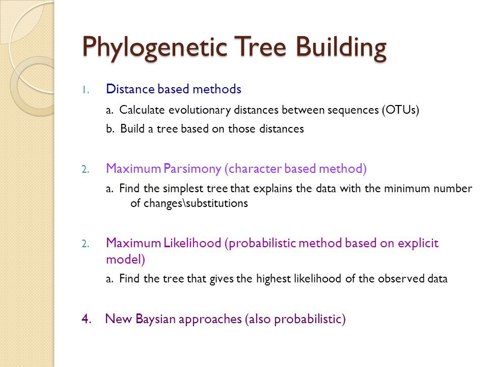 Phylogenetic Tree Building 1. Distance based methods a. Calculate evolutionary distances between sequences (OTUs) b. Build a tree based on those dista