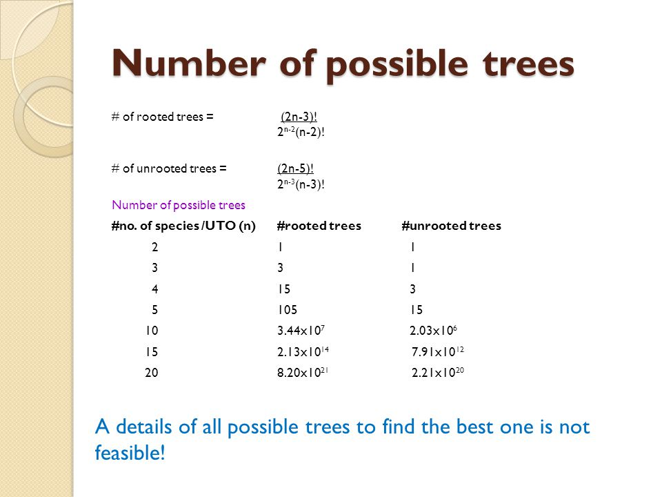 Phylogenetic Tree Building 1.Distance based methods a.