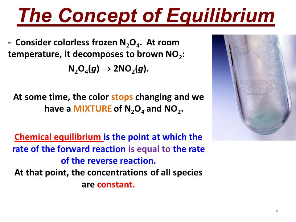 5 The Concept of Equilibrium - Consider colorless frozen N 2 O 4.