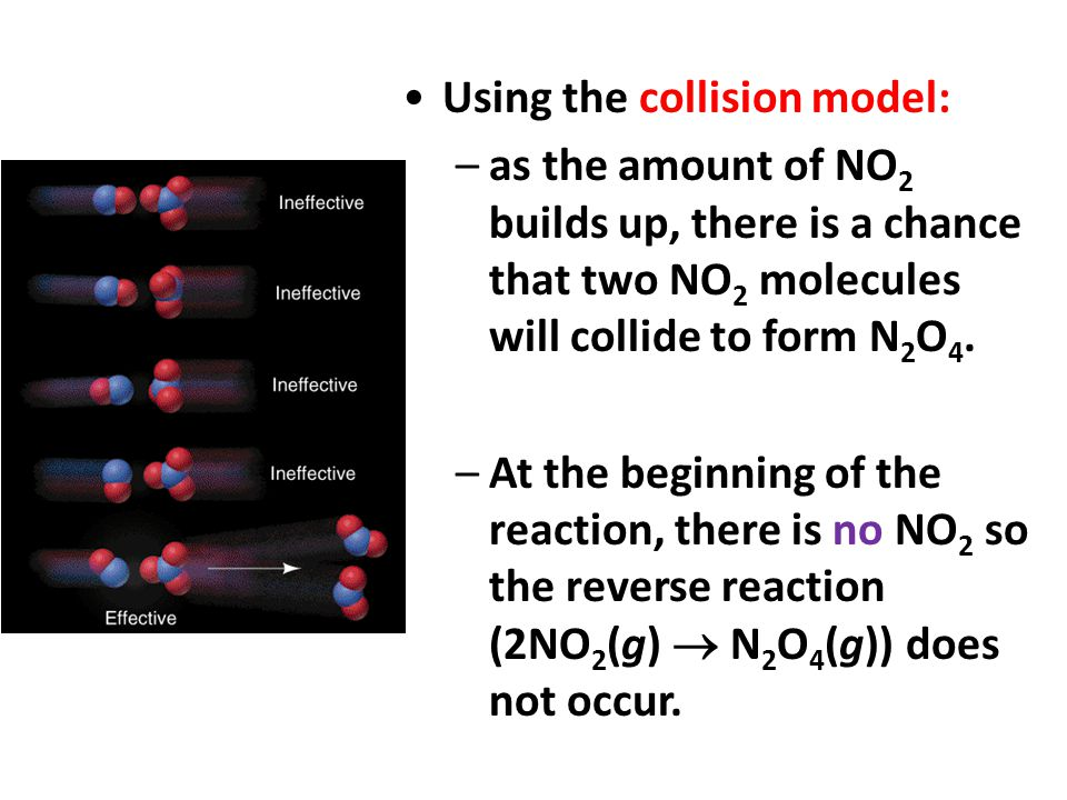 Using the collision model: –as the amount of NO 2 builds up, there is a chance that two NO 2 molecules will collide to form N 2 O 4. –At the beginning
