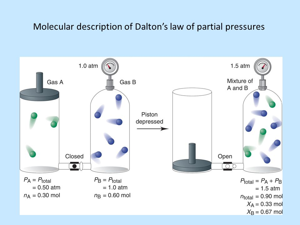 Molecular description of Dalton's law of partial pressures