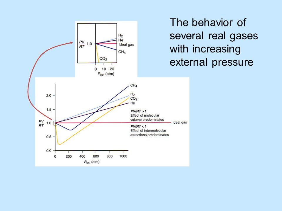 The behavior of several real gases with increasing external pressure